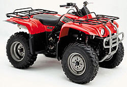 2002 Yamaha Big Bear 400 4X4