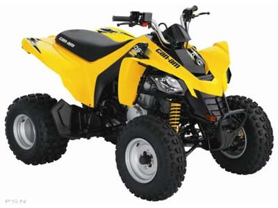 2010 Can-Am DS 250�