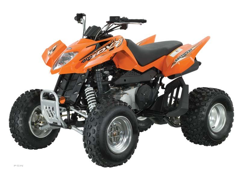 2013 Arctic Cat 300 DVX™