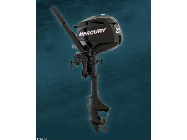 2008 Mercury 2.5 15 in.