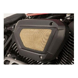 Add a performance attitude with this direct replacement for the Bolts OE air cleaner cover.  No fuel system or ECU modifications needed.  Choose from stainless steel or brass mesh.Fits '14-'15 Bolt/Bolt R-Spec