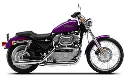 2001 Harley-Davidson XL 883C Sportster Custom
