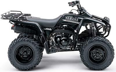 Yamaha Wolverine 4X4 2004