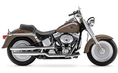 2004 Harley-Davidson FLSTF/FLSTFI Fat Boy�