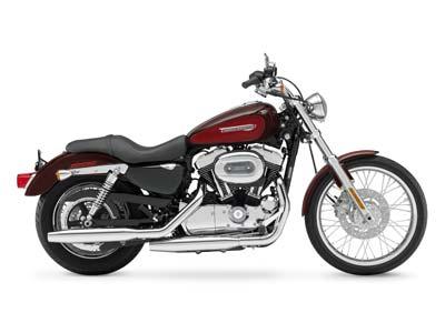 2008 Sportster 1200 Custom
