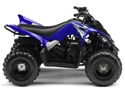T rex motorcycle for sale for 2011 yamaha raptor 90 for sale
