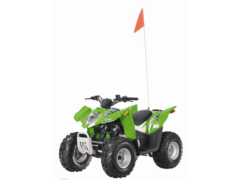Arctic Cat 90 DVX 2011