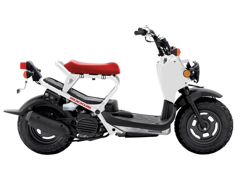 2013 Honda Ruckus� (NPS50)