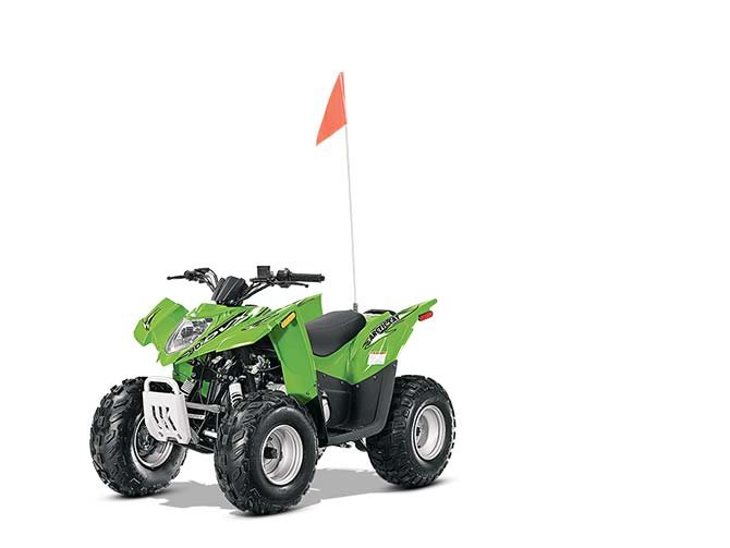 2014 Arctic Cat DVX™ 90