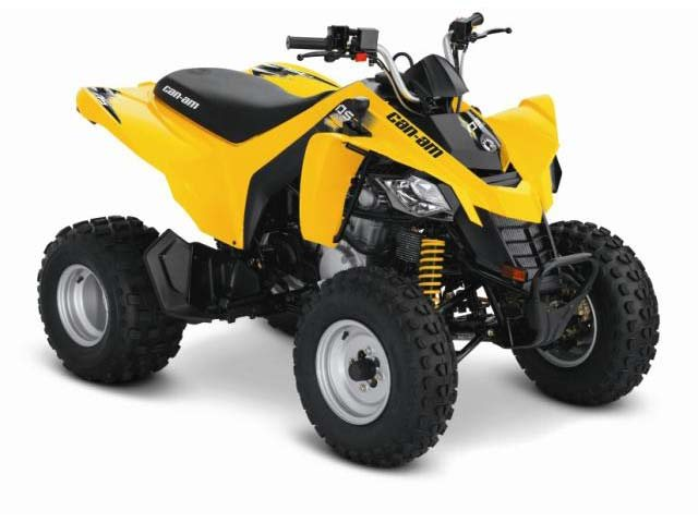 2014 Can-Am DS 250®