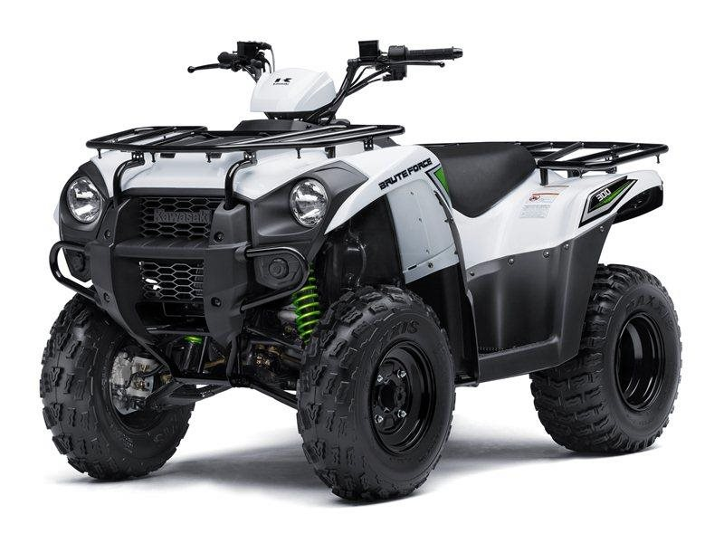 2016 Brute Force 300 Bright White