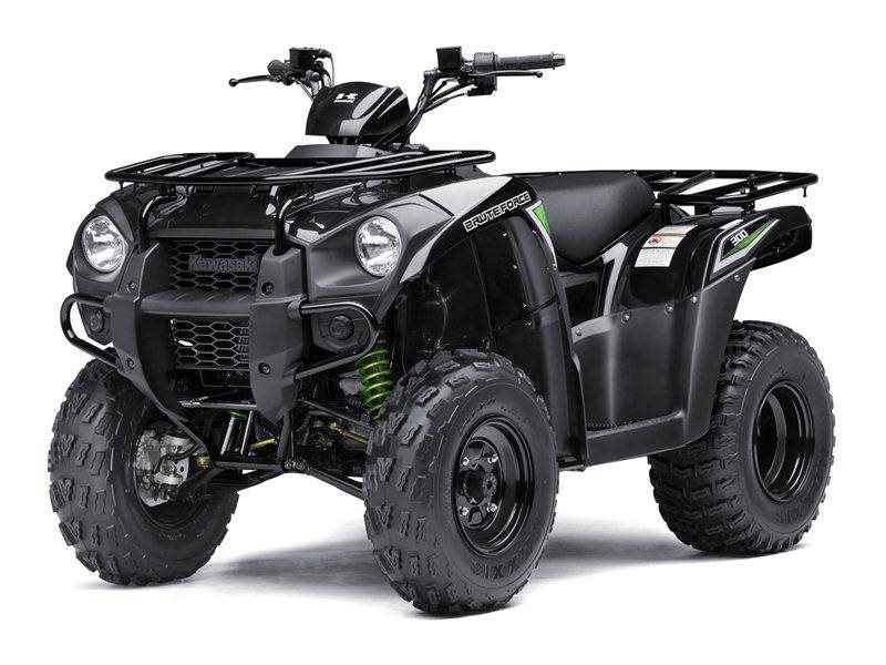2016 Brute Force 300 Super Black