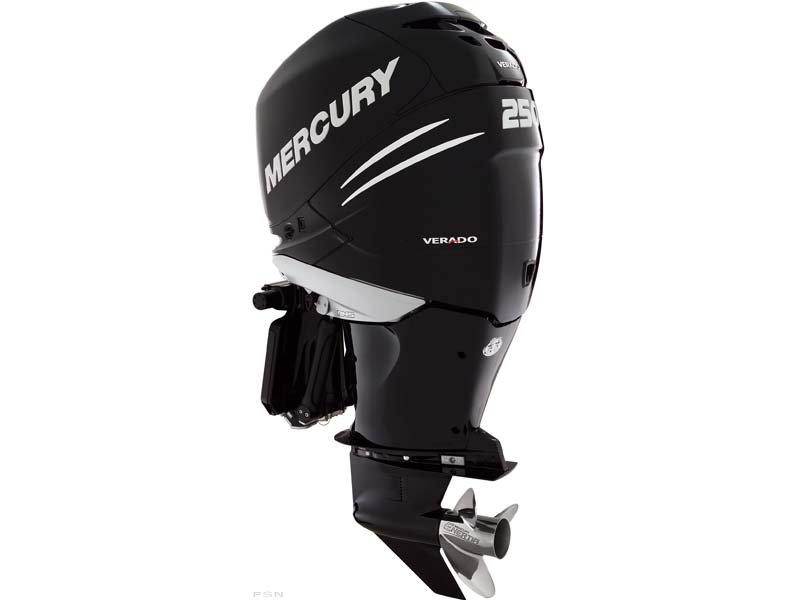 2009 Mercury Verado 250