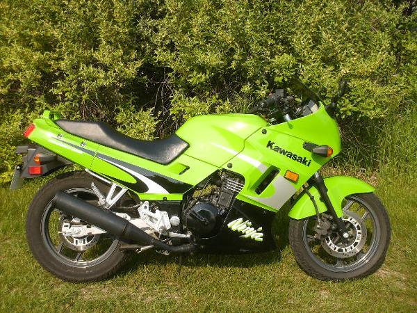 Kawasaki Ninja 250R 2002
